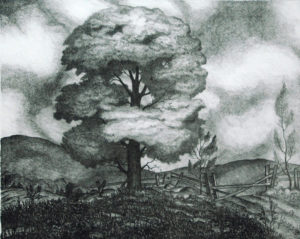 Clarence Bolton Tree Study, lithograph