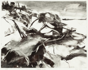 Paula Nelson, Coastal View, monoprint